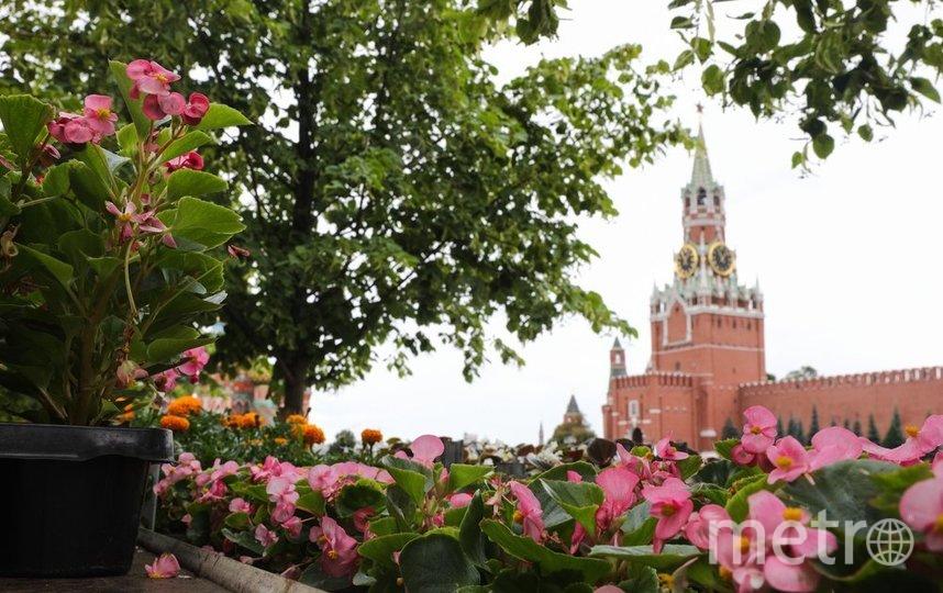"""Вильфанд уточнил, что лишь в юго-западной Сибири температура в сентябре будет около нормы. Фото агентство """"Москва"""""""