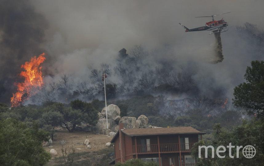 В Калифорнии уже сгорело более двух миллионов акров земли. Фото AFP