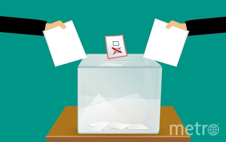 Очередные выборы пройдут в столице. Фото pixabay