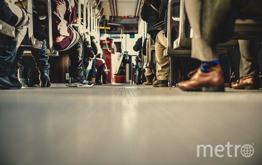 """Данный вопрос был поднят в рамках нулевых чтений городского бюджета. Фото pixabay.com, """"Metro"""""""