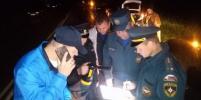 86 человек искали женщину, ребёнка и собаку, пропавших в лесу под Петербургом