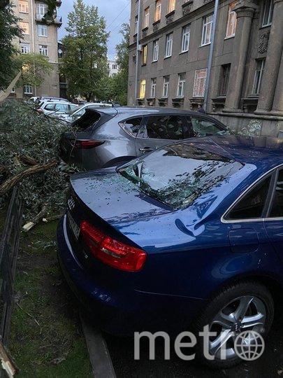 Что натворил шторм в Петербурге 10 сентября. Фото ДТП/ЧП, vk.com
