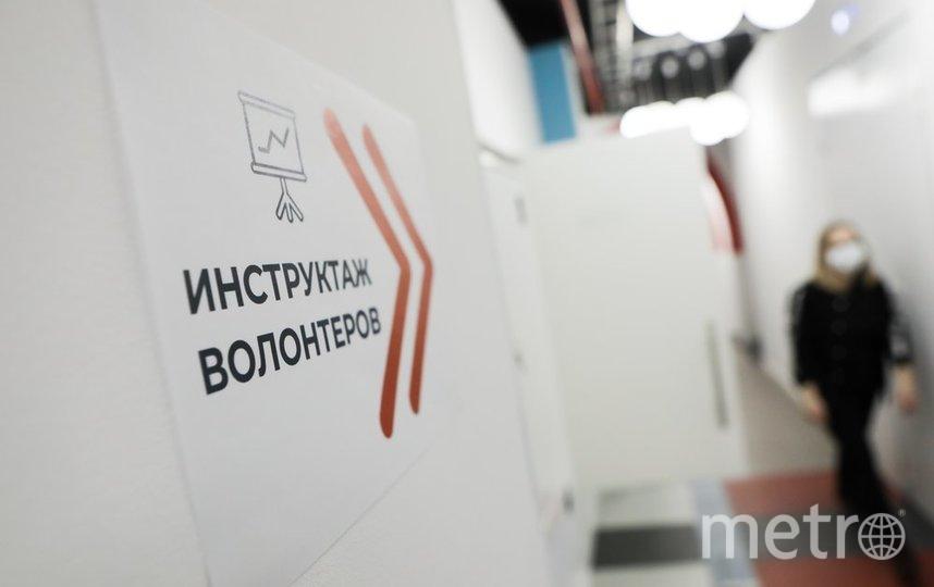"""Частью волонтёрского движения могут стать многие –педагоги, программисты, дизайнеры, маркетологи, психологи и другие. Фото агентство """"Москва"""""""