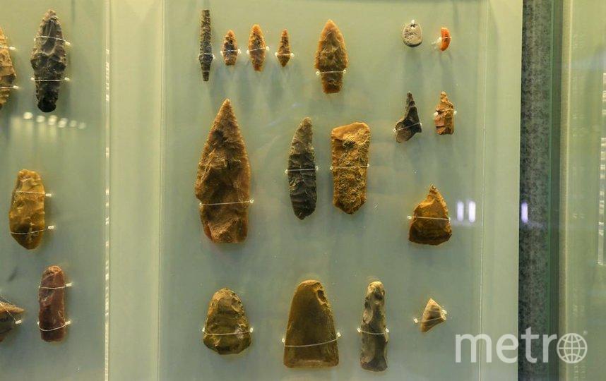 На выставке представлено свыше 900 экспонатов. Фото Василий Кузьмичёнок