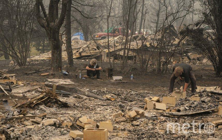 В результате удара стихии как минимум 4 человека погибло в Орегоне и 11 – в других штатах.. Фото AFP