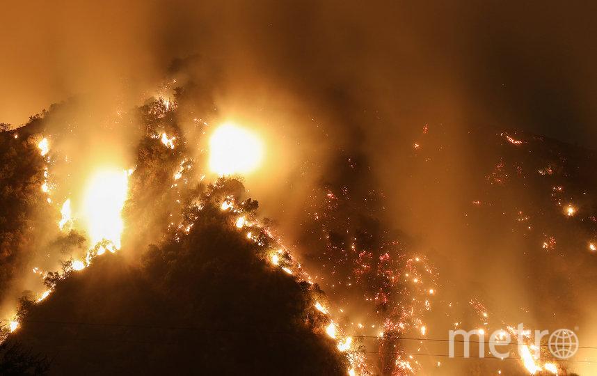 По меньшей мере 87 лесных пожаров зафиксировано в 11 штатах. Фото AFP