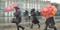 В Петербурге порывистый ветер утихнет к выходным