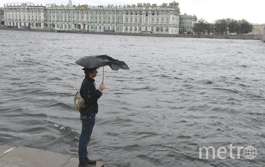 Погода в Петербурге ненастная. Фото Интерпресс