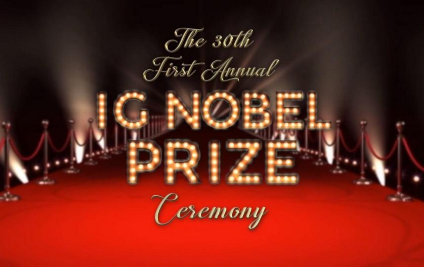 Логотип онлайн-церемонии вручения шуточной Шнобелевской премии 2020 года. Фото Скриншот Youtube