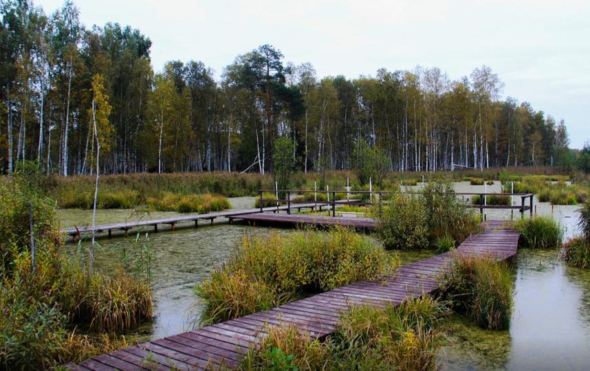 """Парк """"Лосиный остров"""". Фото elkisland.ru"""
