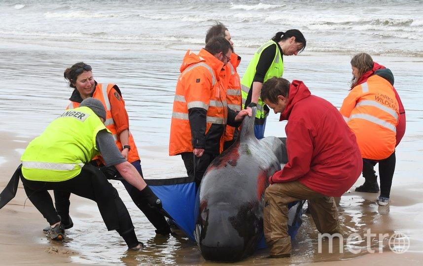 По приблизительным оценкам, спасательная операция продлится несколько дней. Фото AFP