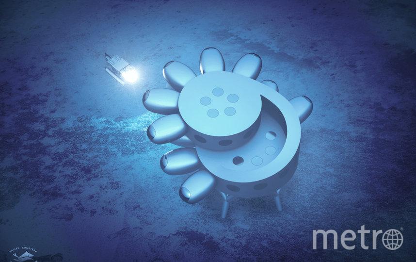 На станции также появится первая подводная теплица. Фото PROTEUS