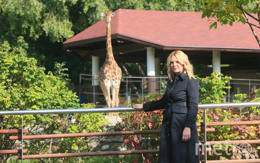 Светлана Акулова,  гендиректор Московского зоопарка. Фото Василий Кузьмичёнок