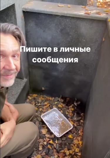 Котят обнаружили в доме. Фото Instagram @shnurovs