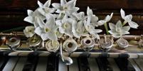 Петербурженка заключила мировое соглашение с театром, в котором получила удар флейтой