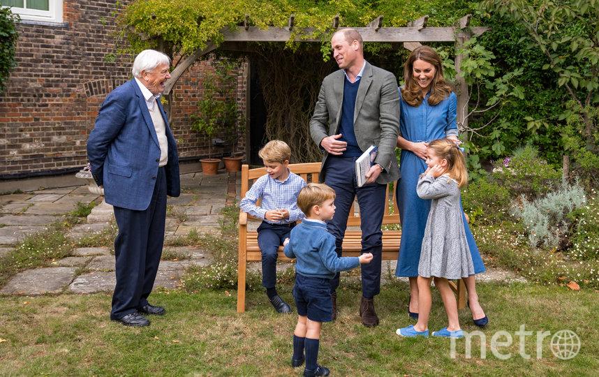 Встреча королевской четы с Дэвидом Аттенборо прошла на днях. Фото AFP