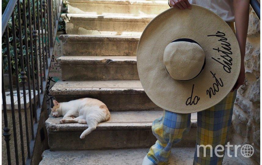 """""""Не беспокоить"""". Фото Tilman Wagner/ Comedy Pet Photo Awards 2020"""