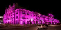 Политехнический музей станет розовым в рамках кампании по борьбе с раком груди