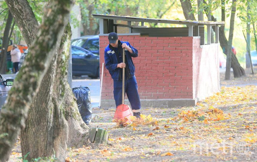 Дворники могут использовать только мягкие грабли, потому что острые портят газоны. Фото Василий Кузьмичёнок