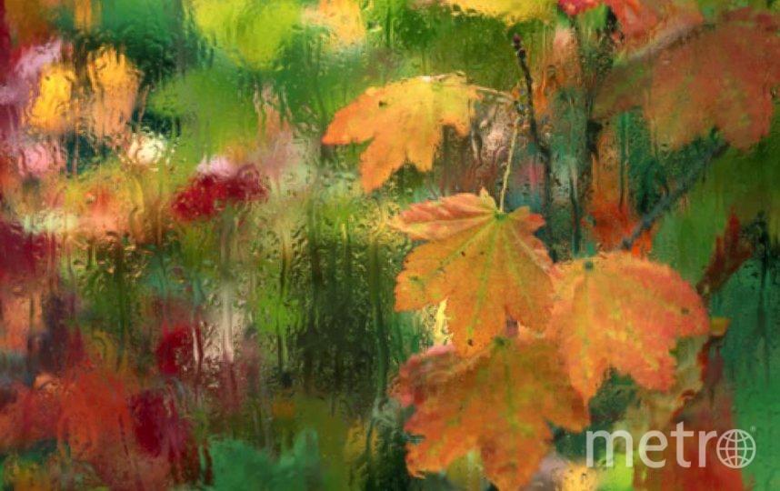 Осень вступает в права. Фото Getty