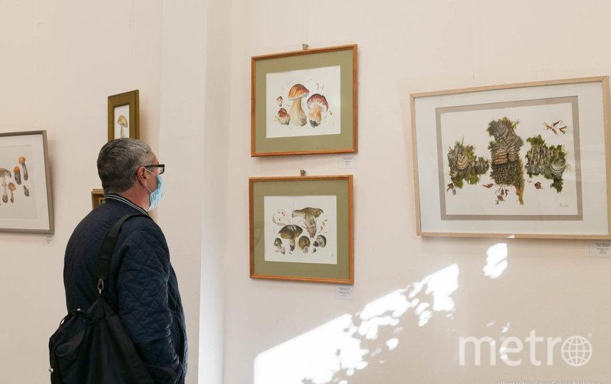 """Нарисованные цветы на выставке """"Пора любования"""". Фото vk.com"""