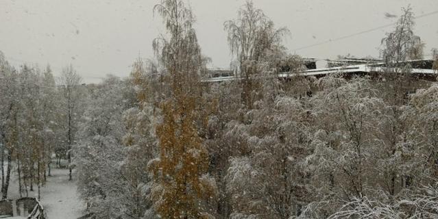 Снег в Петергофе 19 октября 2020 года.