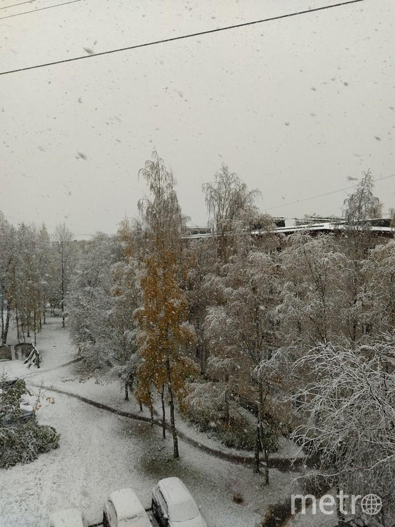 """Снег в Петергофе 19 октября 2020 года. Фото Евгения Назарова, """"Metro"""""""