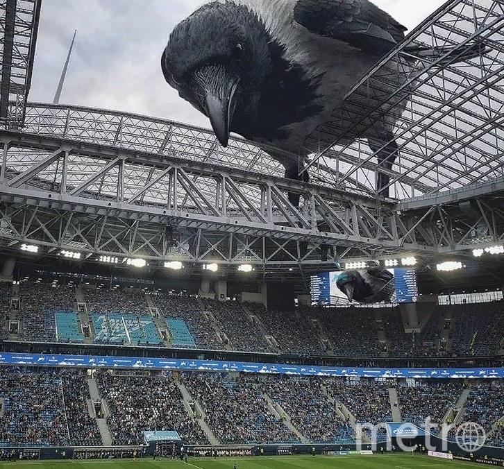Вадим Соловьев добавляет на фото Петербурга гигантских зверей. Фото instagram.com/solovyewadim/.