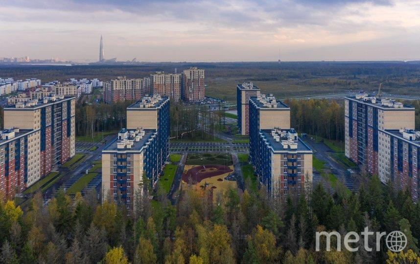 """Строители создают возможности для активного отдыха как жителей, так и их питомцев. Фото «Главстрой Санкт-Петербург», """"Metro"""""""