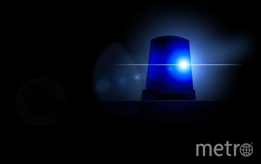 Пострадали двое полицейских. Фото Pixabay.