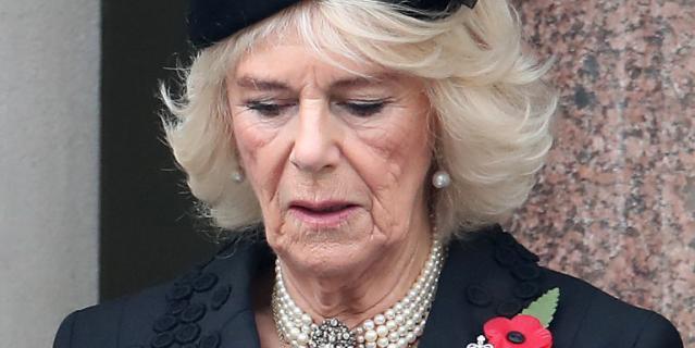 День поминовения павших в Британии. Супруга принца Чарльза.