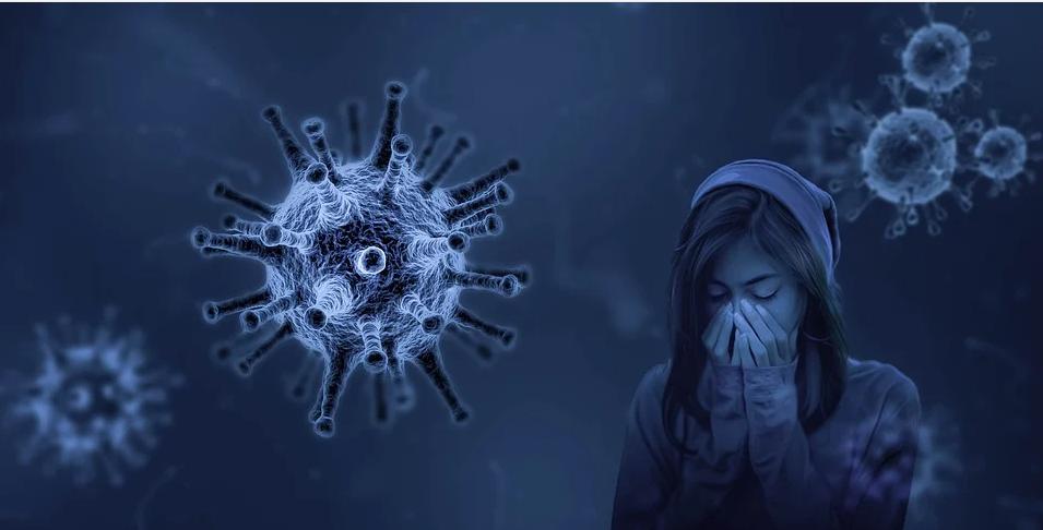 Вирус разрушает эритроциты, красные кровяные тельца, отвечающие в организме за перенос насыщенного железом белка гемоглобина и связанного с ним кислорода. Фото pixabay.com