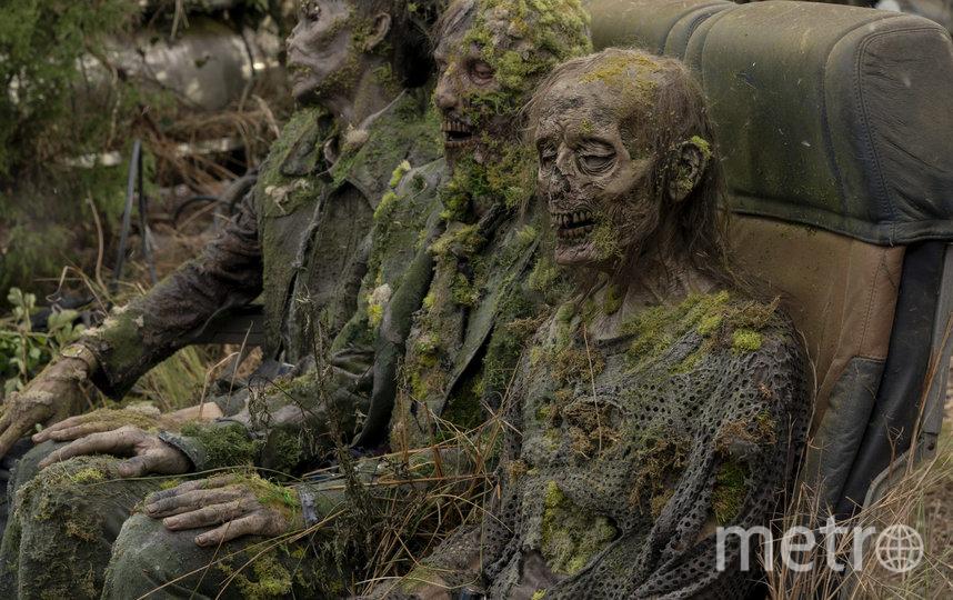 Каждую неделю на AMC выходит по одной серии нового сериала. Фото AMC