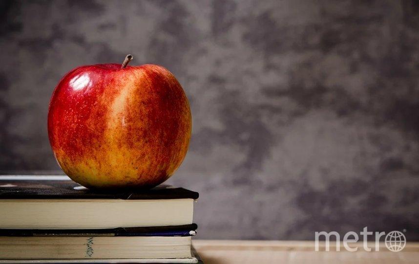 Питание в школе организовывает ООО «ТД «Профпит». Фото Pixabay.