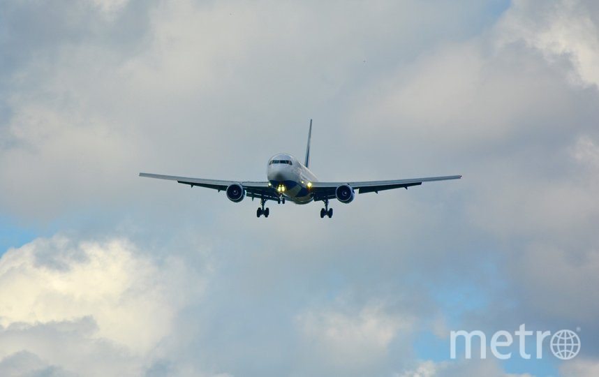 За 10 минут до посадки сотрудники аэропорта очистили взлетно-посадочную полосу. Фото pixabay.com