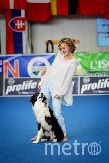 Соревнования по танцам с собакой. Фото все фото предоставлены РКФ и Полиной Ильиной