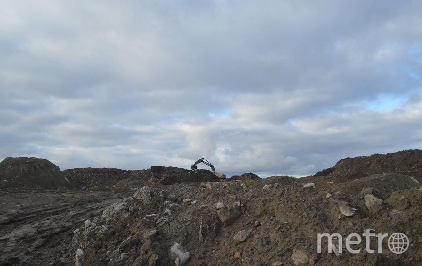 """Так выглядит дорога для самосвалов в самом начале свалки. Высота некоторых мусорных гор в несколько раз  превышает человеческий рост. Фото Людмила Сагайдачная, """"Metro"""""""