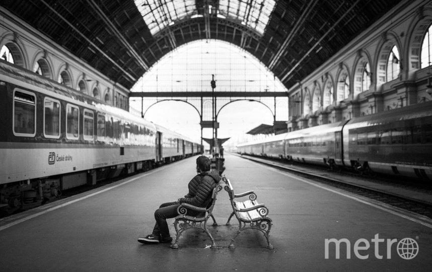 На сапсане из Петербурга в Москву можно доехать за 3 часа 46 минут. Фото pixabay.com