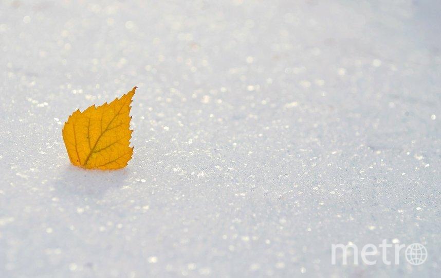 """Снег ожидается с начала недели. Фото pixabay.com, """"Metro"""""""