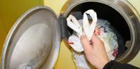 В России предложили ликвидировать мусоропроводы в многоквартирных домах