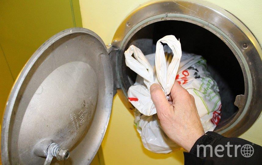 В июне 2020 года о необходимости ликвидации мусоропроводов заявляли в российском правительстве. Фото pixabay.com