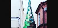 В Петербурге появилась шестиметровая ель