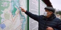 Как в Ленинградской области спасают летучих мышей