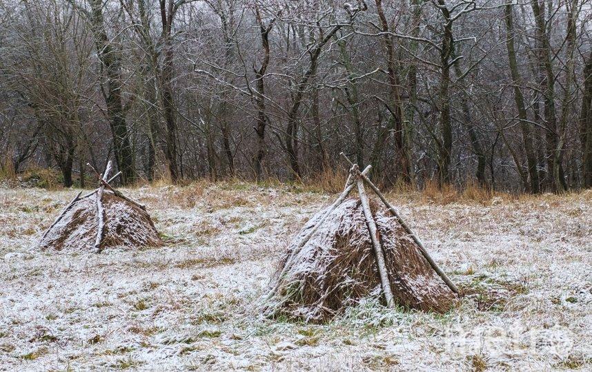 """На экологической тропе на территории заповедника поставили небольшие стожки из сена. Фото Алена Бобрович, """"Metro"""""""