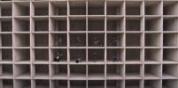 Группа ДДТ выпустила клип, посвященный 2020 году, который снимался в Мурино
