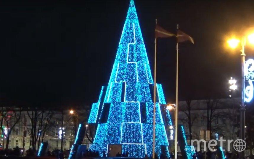 Названа самая красивая рождественская ель Европы. Фото 1PR youtube.com.