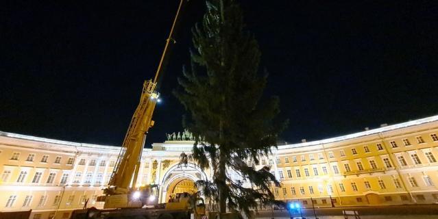 Так выглядит елка на  Дворцовой.