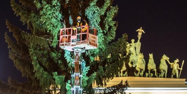 Так выглядит елка-2021 на  Дворцовой.