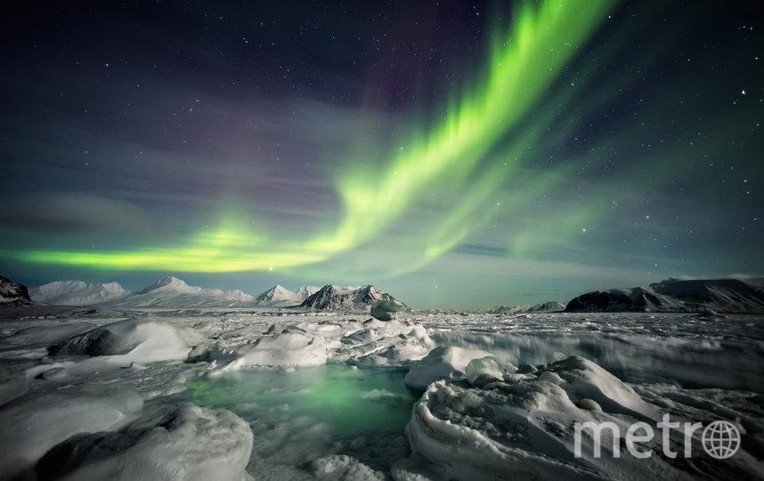Проект Arctic Сonnect (Арктик Коннект).