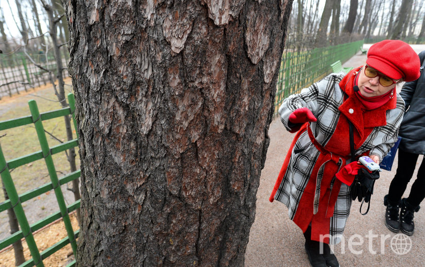 """Рядом с """"экспонатами"""", которые находятся на охраняемых территориях установлены таблички с QR-кодами, отсканировав которые можно получить историческую справку и войти в приложение. Фото Святослав Акимов, """"Metro"""""""